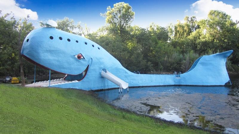Blue Whale Final